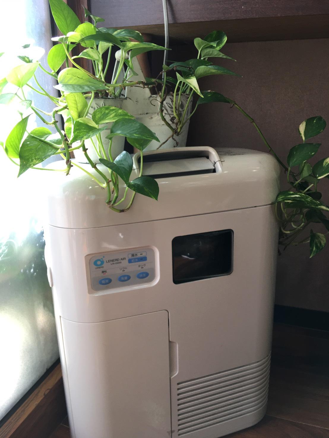 当店では業務用の空気清浄機を配置しております